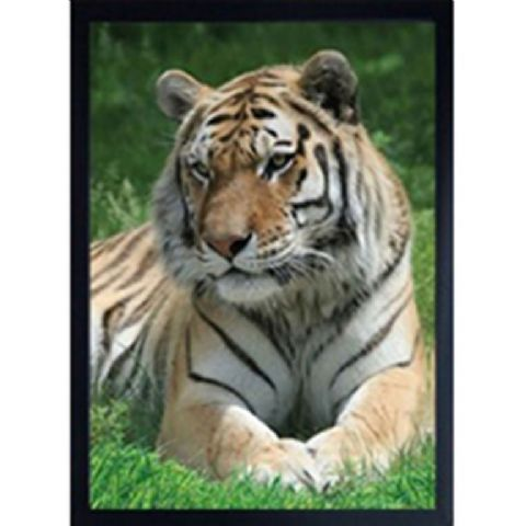 TIGER 3D FRIDGE MAGNET